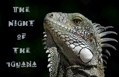 401-260_iguana-with-title