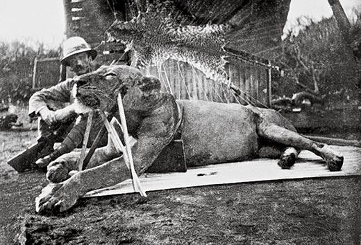 Colonel_Patterson_with_Tsavo-Lion