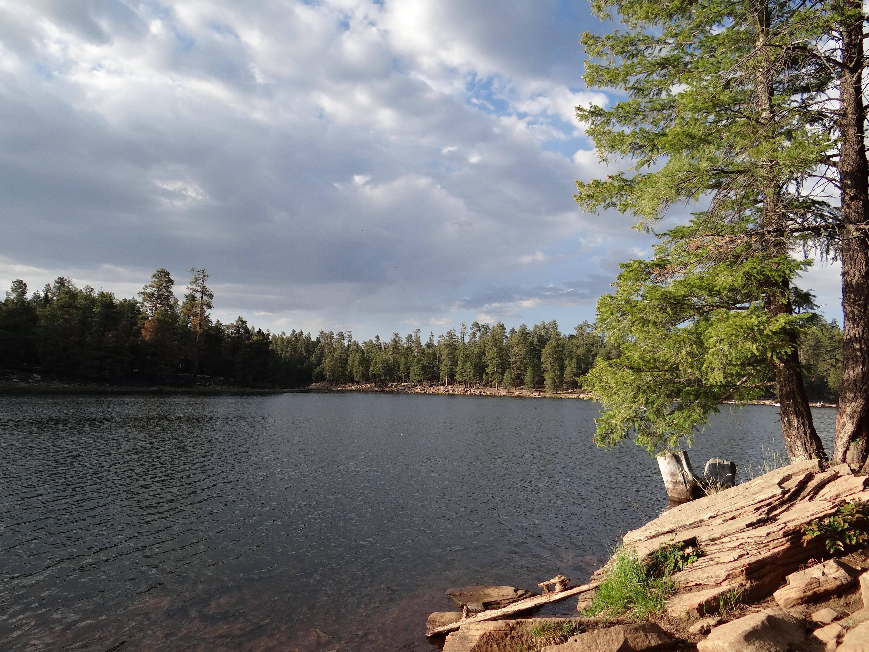 Woods canyon lake az cindy bruchman for Canyon lake az fishing