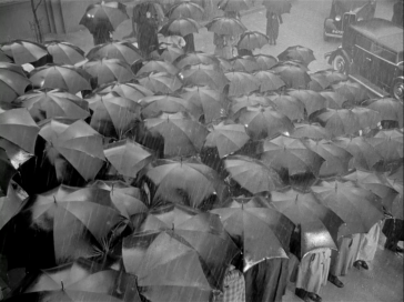 A sea of umbrellas