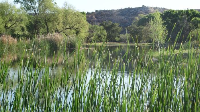 Lagoon One
