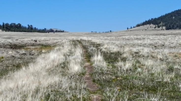Meadow Hike Trail