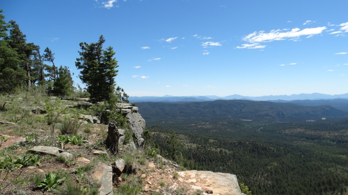 Mogollon Rim (Muggy-on)